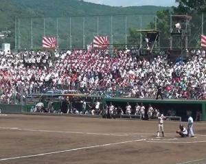 甲子園! 大好き熊本の高校野球 2014