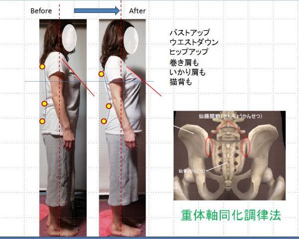kamiの仙腸関節研究所 骨盤バランス法|新方式整体 重体軸同化調律法